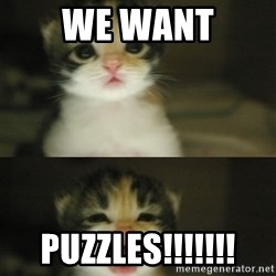 Adorable Kitten - we want puzzles!!!!!!!