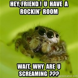 The Spider Bro - Hey, Friend !  U  Have  A  Rockin'  Room Wait,  Why  Are  U Screaming  ???