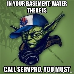 Street Yoda - In your basement, water there is Call SERVPRO, You must