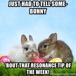 easter bunnies - just had to tell some-bunny 'bout that resonance tip of the week!