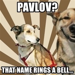 Stoner dogs concerned friend - pavlov? that name rings a bell...
