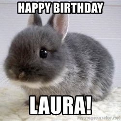 ADHD Bunny - Happy birthday Laura!