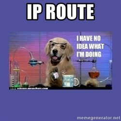 I don't know what i'm doing! dog - ip route