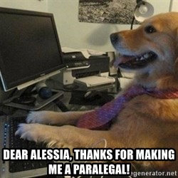 I have no idea what I'm doing - Dog with Tie -  Dear alessia, thanks for making me a paralegal!
