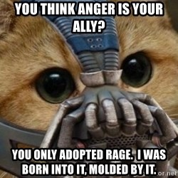 bane cat - You think anger is your ally? You only adopted rage.  I was born into it, molded by it.