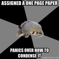 English Major Armadillo - ASSIGNED A ONE PAGE PAPER PANICS OVER HOW TO CONDENSE IT