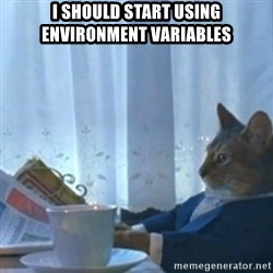 Sophisticated Cat Meme - i should start using environment variables