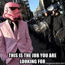 stormtrooper -  THIS IS THE JOB YOU ARE LOOKING FOR