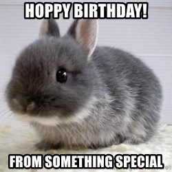 ADHD Bunny - HOPPY BIRTHDAY! from something special