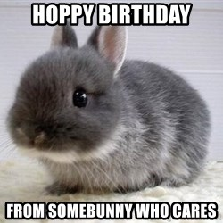 ADHD Bunny - hoppy birthday from somebunny who cares
