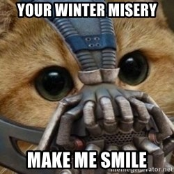 bane cat - your winter misery make me smile