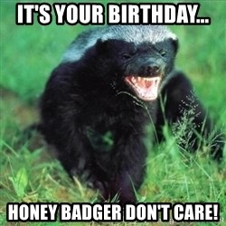 Honey Badger Actual - It's your birthday... Honey badger don't care!