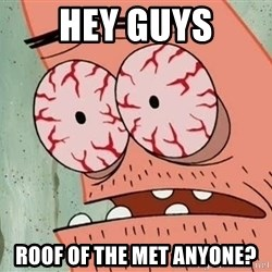 Stoned Patrick - hey guys roof of the met anyone?