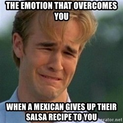 Crying Dawson - the emotion that overcomes you when a mexican gives up their salsa recipe to you