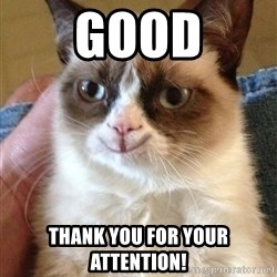 Happy Grumpy Cat 2 - good Thank you for your attention!