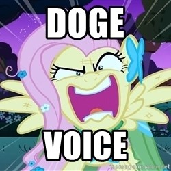 angry-fluttershy - Doge Voice
