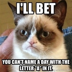 """not funny cat - I'll bet you can't name a day with the letter """"a"""" in it."""
