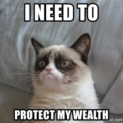 Grumpy cat 5 - I need to  protect my wealth