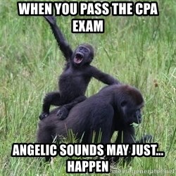 Happy Gorilla - when you pass the cpa exam angelic sounds may just... happen