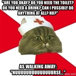 "Nursing Student Cat - ""Are you okay? Do you need the toilet? Do you need a drink? Can I possibly do anything at all? No?"" As walking away: ""nuuuuuuuuuuuuuurse..."""
