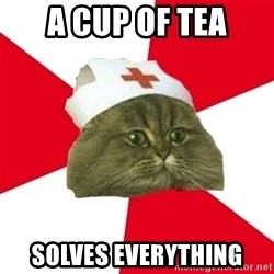Nursing Student Cat - A cup of tea solves everything