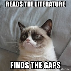 Grumpy cat good - reads the literature finds the gaps