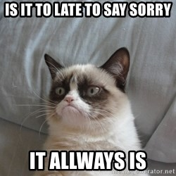 Grumpy cat good - Is it to late to say sorry It allways is