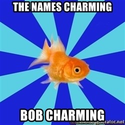 Absentminded Goldfish - The names Charming Bob Charming