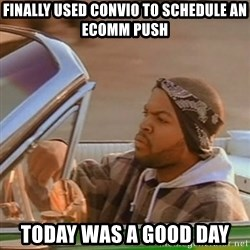 Good Day Ice Cube - Finally used Convio to schedule an ecomm push today was a good day