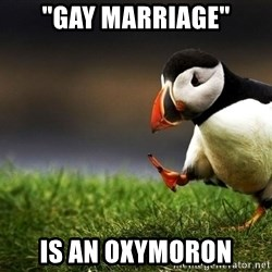 "Unpopular Opinion Puffin dupe - ""Gay marriage"" is an oxymoron"
