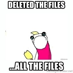 sad do all the things - Deleted the files ...all the files