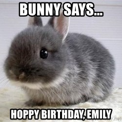 ADHD Bunny - Bunny says... Hoppy Birthday, Emily