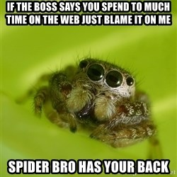 The Spider Bro - If the boss says you spend to much time on the web just blame it on me spider bro has your back