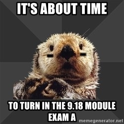 Roller Derby Otter - It's about time to turn in the 9.18 Module Exam A