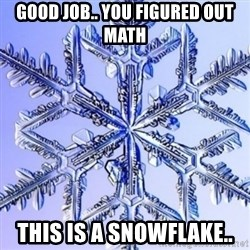Special Snowflake meme - Good job.. you figured out math this is a snowflake..