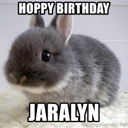 ADHD Bunny - Hoppy Birthday  Jaralyn