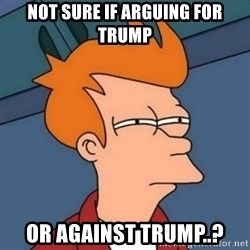 Not sure if troll - Not sure if arguing for Trump Or against Trump..?