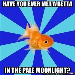 Absentminded Goldfish - Have you ever met a betta in the pale moonlight?
