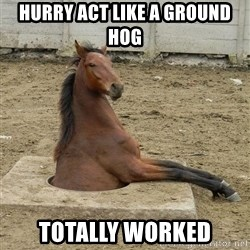 Hole Horse - Hurry act like a ground hog Totally worked
