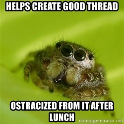 The Spider Bro - Helps create good thread Ostracized from it after lunch