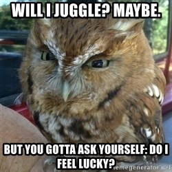 Overly Angry Owl - Will I juggle? Maybe.  But you gotta ask YOURSELF: Do I feel lucky?