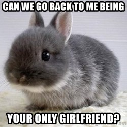 ADHD Bunny - Can we go back to me being Your only girlfriend?