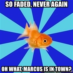 Absentminded Goldfish - so faded, never again oh what, marcus is in town?