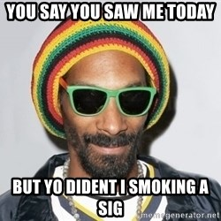 Snoop lion2 - you say you saw me today  but yo dident i smoking a sig