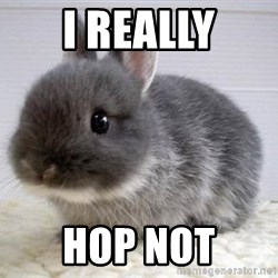 ADHD Bunny - I REALLY HOP NOT