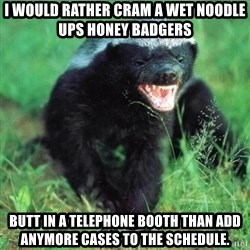 Honey Badger Actual - I would rather cram a wet noodle ups honey badgers butt in a telephone booth than add anymore cases to the schedule.