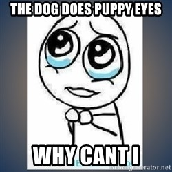 meme tierno - the dog does puppy eyes why cant i