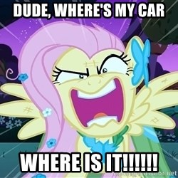 angry-fluttershy - Dude, Where's my car where is it!!!!!!