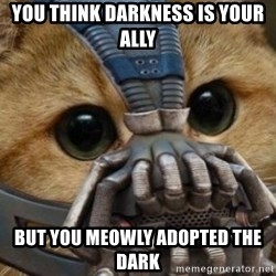 bane cat - YOU think darkness is your ally but you meowly adopted the dark