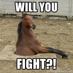Hole Horse - WILL YOU  FIGHT?!